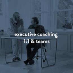 executive-coaching--1-1-Teams